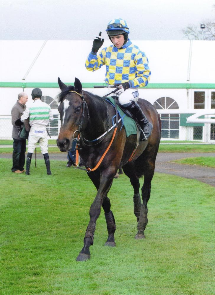 Castlemorris King and Gavin Sheehan after winning yet again