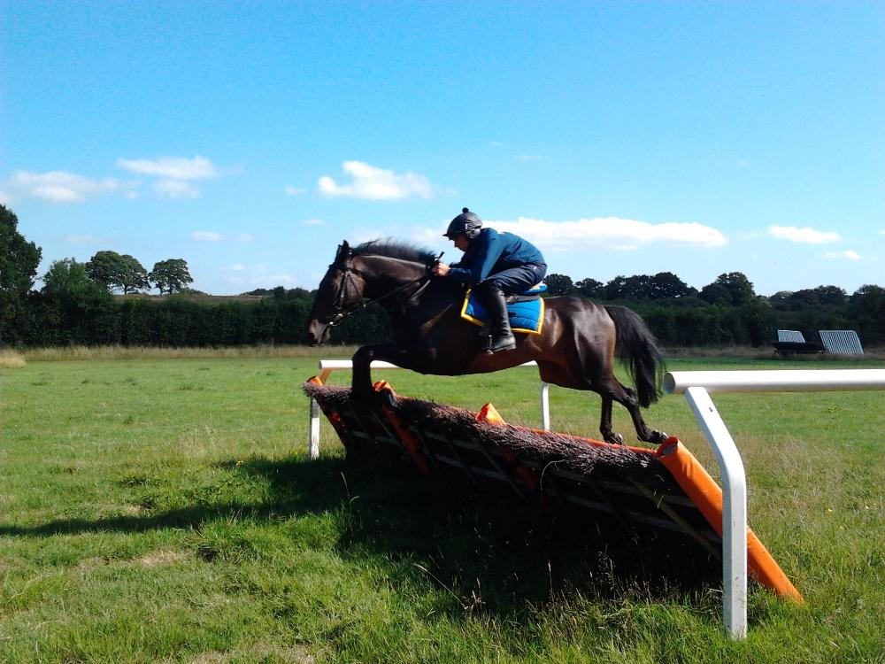 Follow The Tracks schooling under Gavin Sheehan