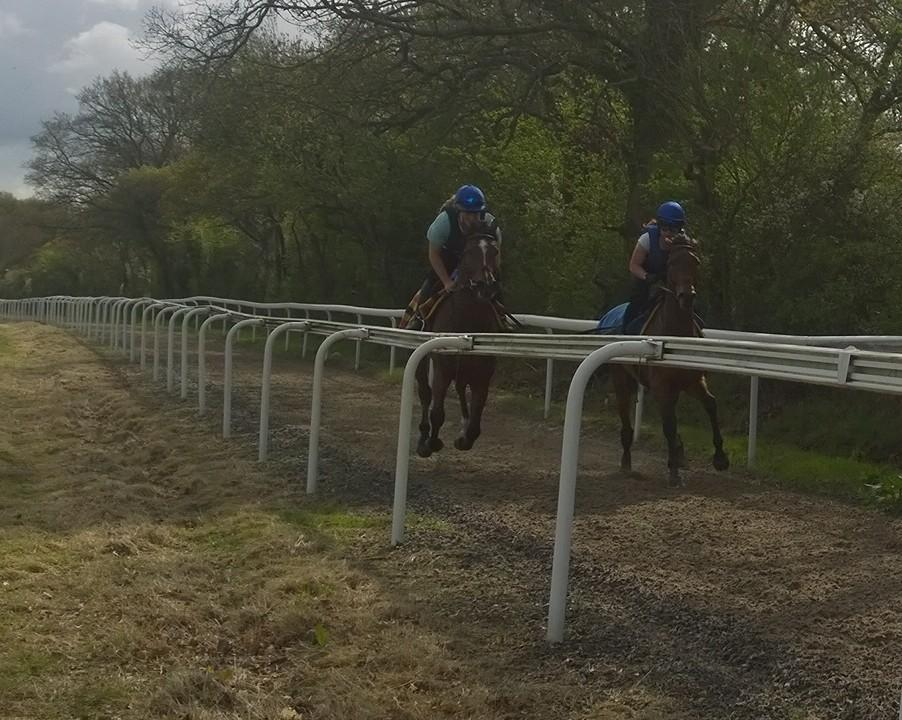 Ballyheigue and Madam Be working over 20f