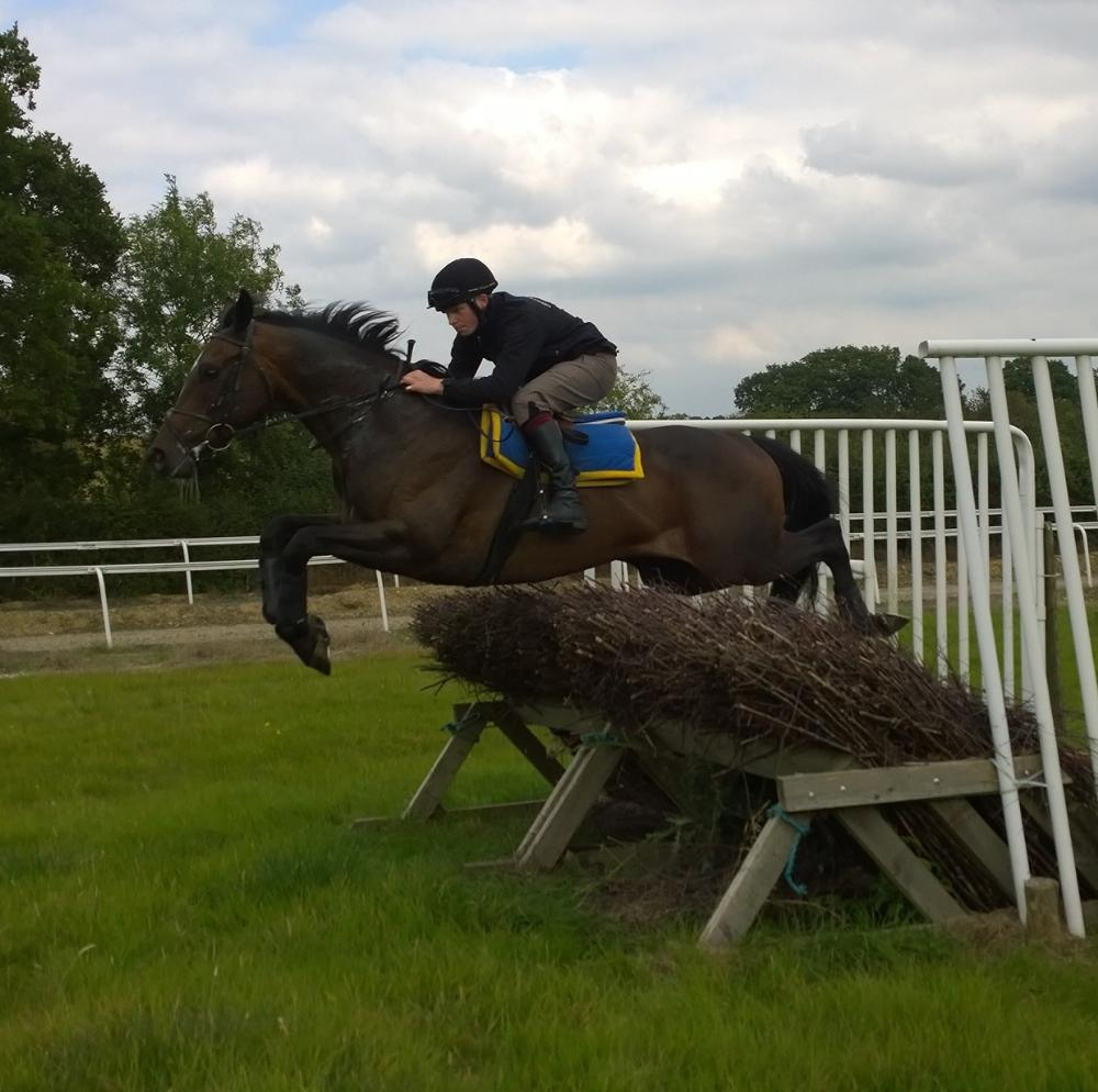 Castlemorris King, first time up over the fences