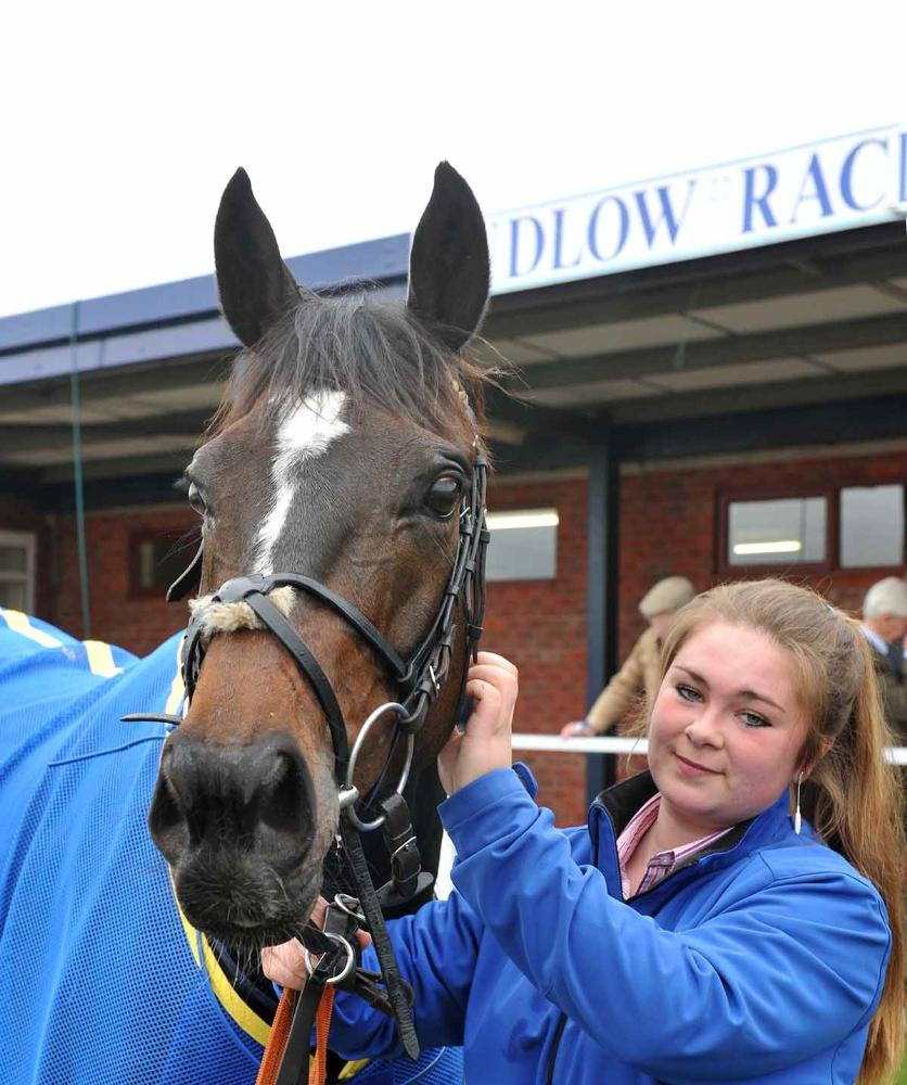 Castlemorris King & Daisy after winning at Ludlow